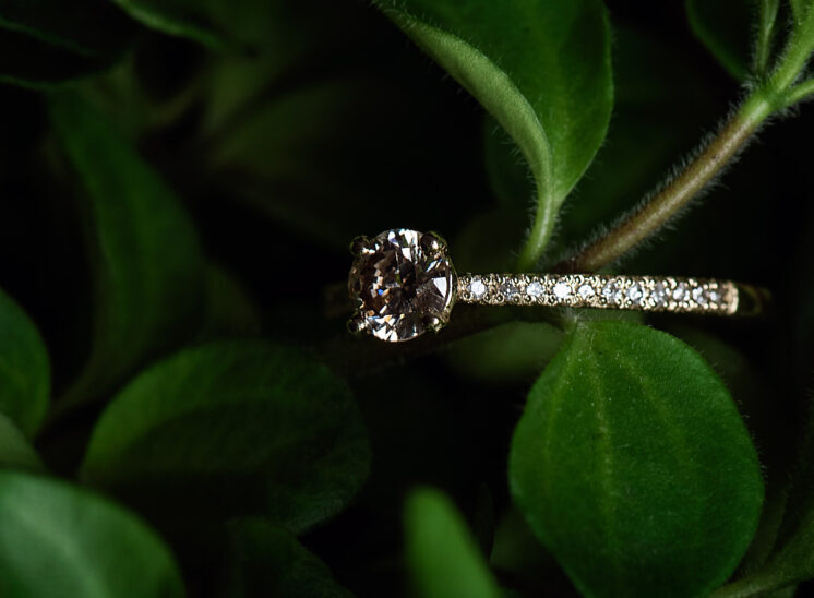 Diamond ring with gold band on succulent